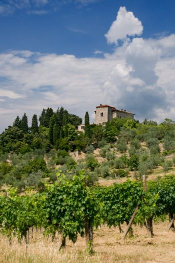 Tuscany Villa in Tuscany, Italy, surrounded by wine and a summer landscape