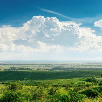 clouds over green vineyard. Ukraine, Trans-carpathian region