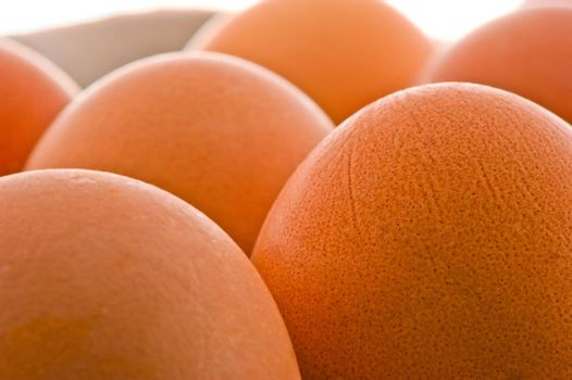 studio photography clean brown raw eggs
