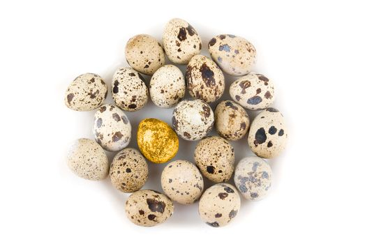 Gold quail egg in many eggs isolated on white