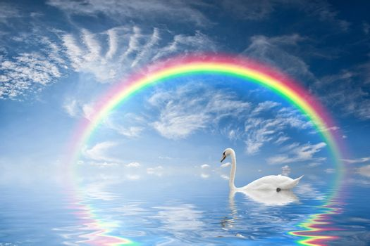 Beautiful seascape with rainbow reflection in water and a floating swan
