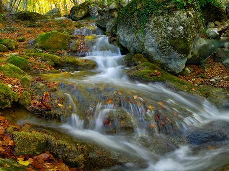 Waterfall is surrounded by moss and fallen autumn maple leaves