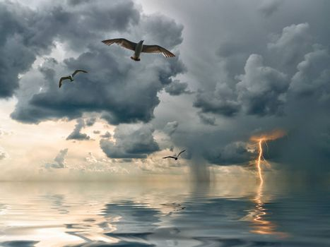 Seagulls over ocean, comes nearer a thunder-storm with rain and lightning on background