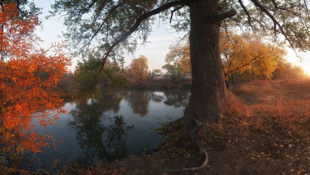 Beautiful autumn landscape on coast of the river, foggy morning with sun. Panorama