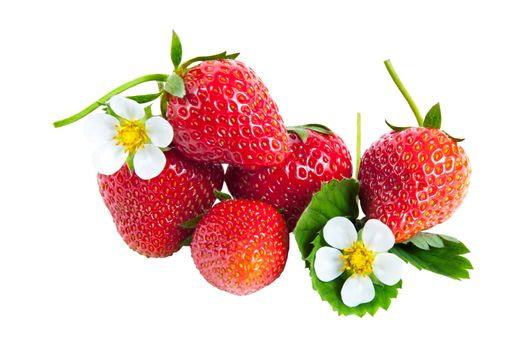 Strawberries with green leaves and flower isolated on white
