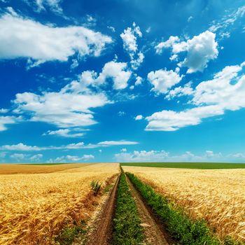 road in golden fields under cloudy sky