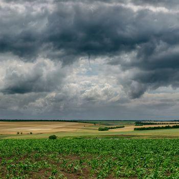 dark cloudy sky and green field