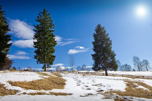 photo showing the sun which is melting the snow  for season change