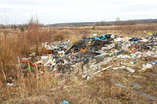 wild refuse heap