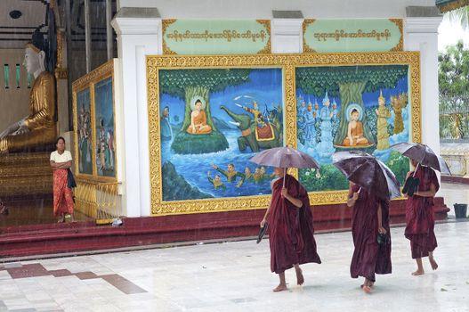 monks in rain at shwedagon paya temple yangon myanmar