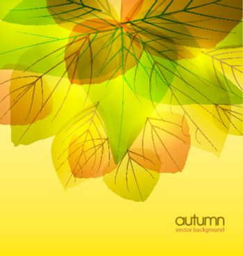 abstract background with colored leaves