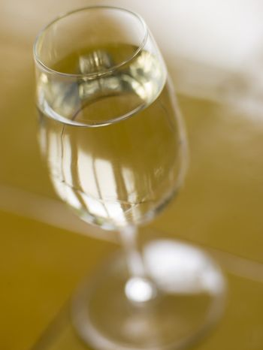 Glass of Spanish Dry Sherry