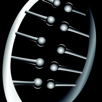 Chromosomal connections