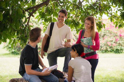 university students meeting and preparing test