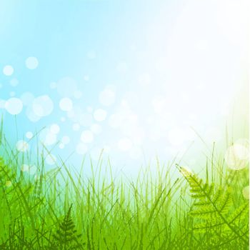 green grass meadow over blue sky background