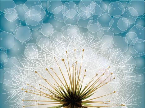 Extreme macro shot of fluffy dandelion seeds with Bokeh background