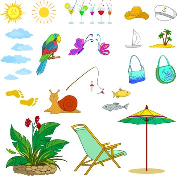 Set objects represent summer, exotic and a beach. Vector