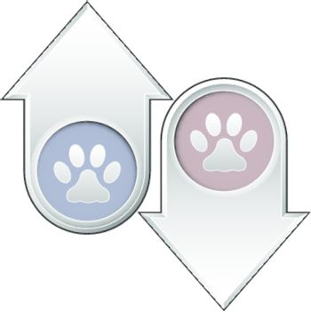 Paw print icon on up and down arrow buttons