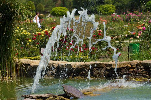 Little cascade in a garden