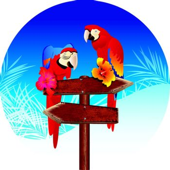 two parrots on The signs Illustrations