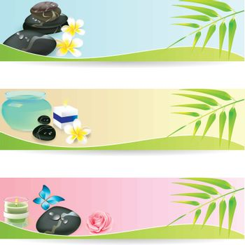Stone Spa Frangipani banner set