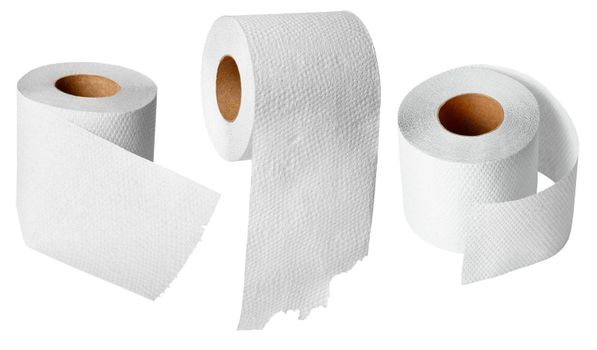 Rolls of toilet paper on white