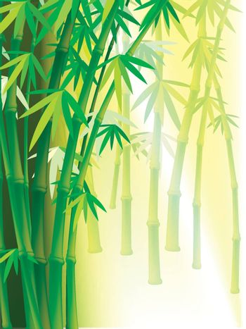 Illustration Bamboo background with copy space