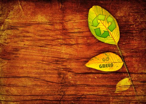 Recycle symbol on the leaf background