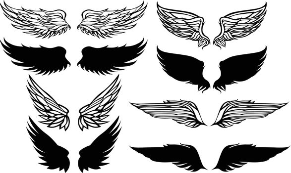 Wings Graphic Vector Set