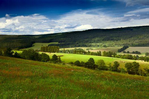 summer green meadows in mountains in Burgsinn, Bavaria