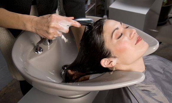 Salon Shampoo