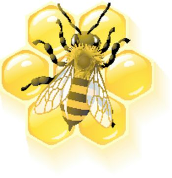 Vector bee and honeycombs