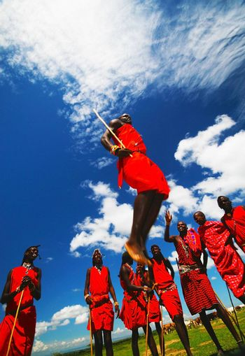 AFRICA, KENYA, MASAI MARA, NOVEMBER 12: Masai warriors dancing traditional jumps as cultural ceremony, review of daily life of local people, near to Masai Mara National Park Reserve, November 12, 2008 Kenya