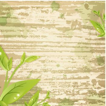 Vintage grunge wooden background with green leaves and copyspace for your text