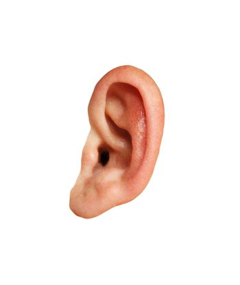 Closeup of a human ear on white background