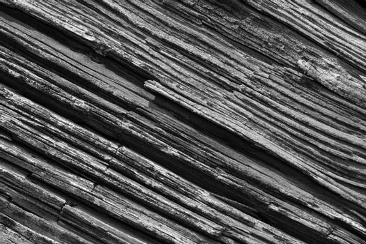 Black and white old natural rotten wood texture