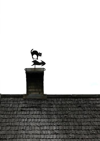 Black and white picture of isolated old wooden roof with chimney and decorative cat