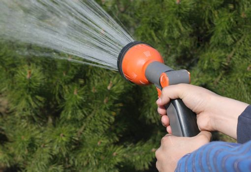 Human hand holding water sprinkler and watering green garden