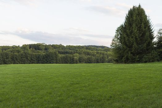 landscape with grassland in south germany