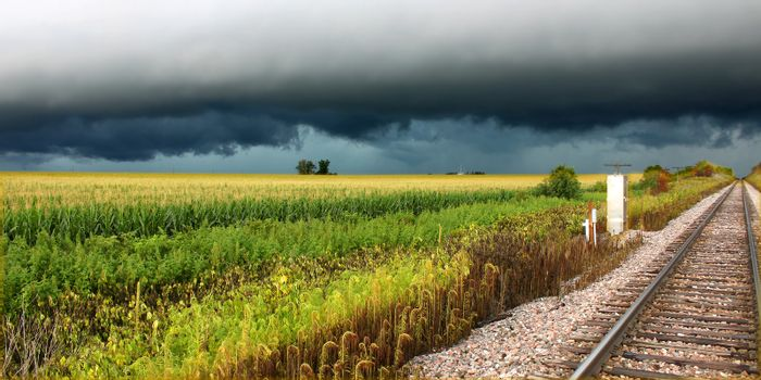 Thunderstorm over railroad tracks and corn fields of northern Illinois.