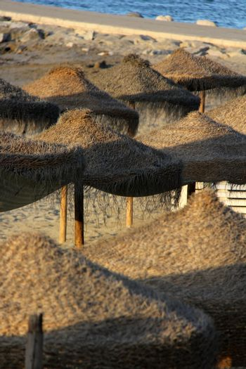 many straw umbrellas on the seaside at the beach