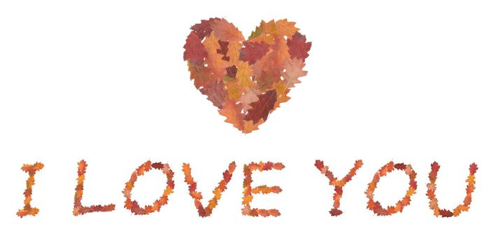 phrase I love you made of autumn leaves as a symbol of valentine's day