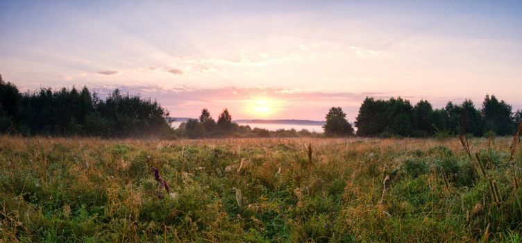 scenic landscape in field, panorama