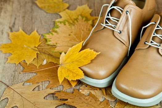 leather shoes and yellow leaves
