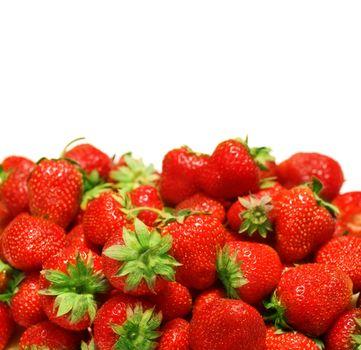 Strawberries Border