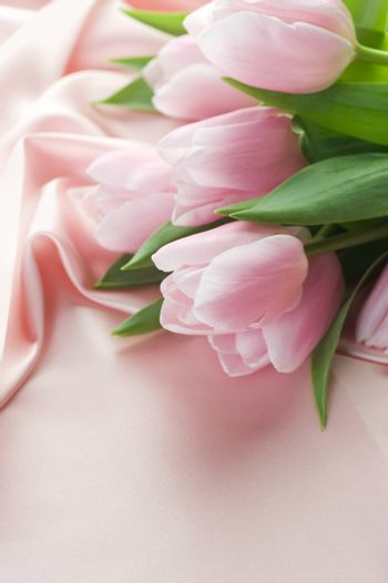 Beautiful Tulips On A Silk. With Copy Space