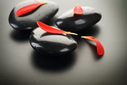 Spa Stones With Red Petals