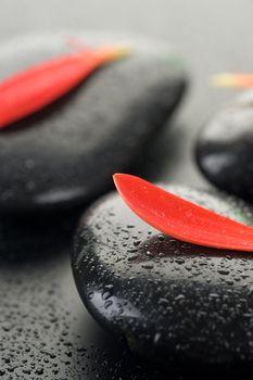 Wet Spa Stones Closeup