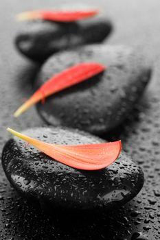 Zen Spa Wet Stones