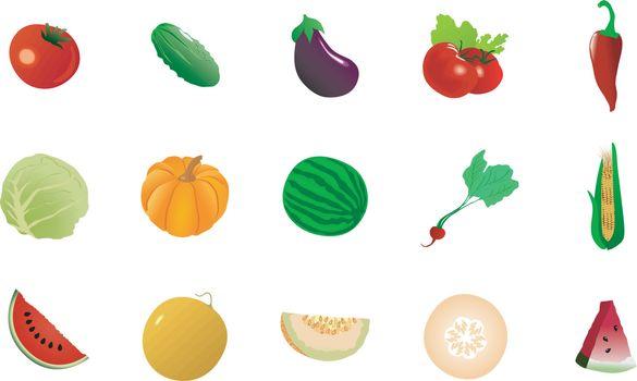 big set of the different vegetables